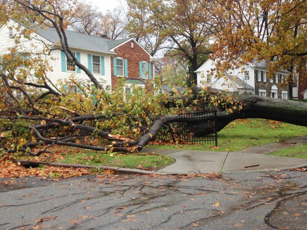 Understanding Community Recovery from Catastrophes