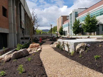 All Eyes are on Campus's New Green Infrastructure Pollinator Garden